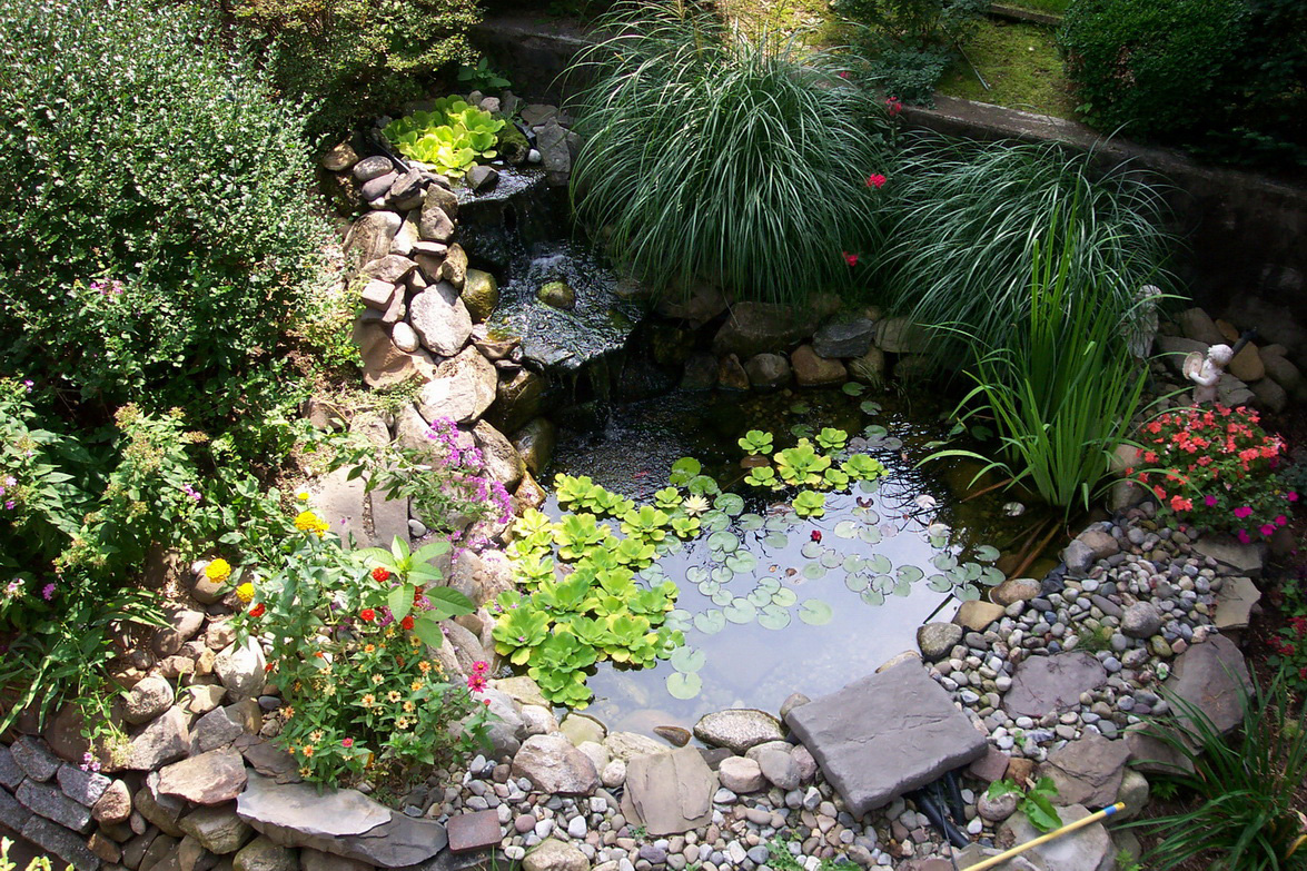 Оформление маленького водоема на даче своими руками 36