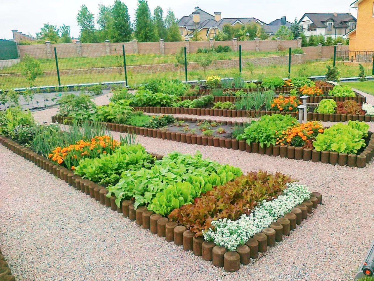 Как сделать сад из огорода 562