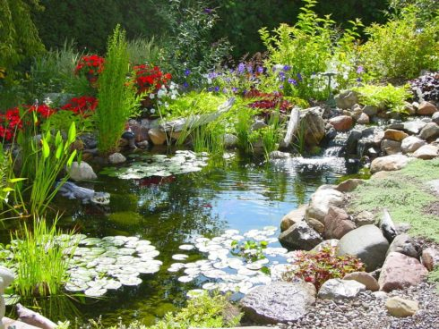 Красивое оформление искусственных водоемов