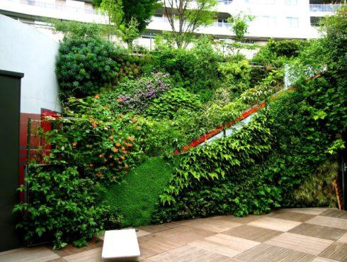 Вертикальное озеленение в ландшафтном дизайне участка