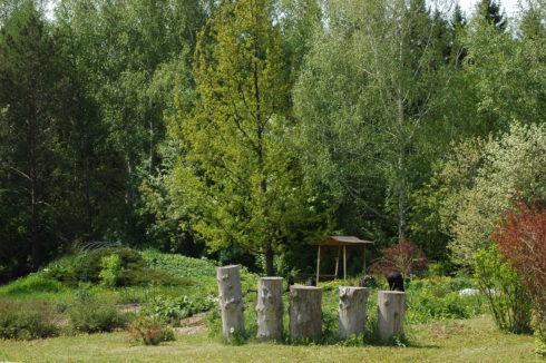 Ландшафтный дизайн сада русский
